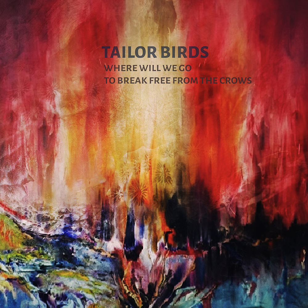 tailor birds-crows-Artwork high resnewWEB